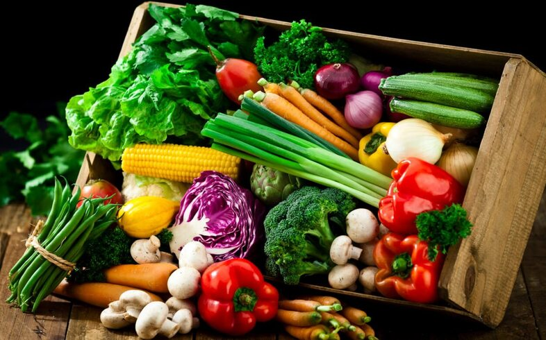 hortalizas y verduras para septiembre