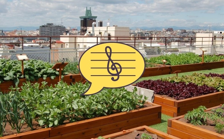 musica para plantas del huerto