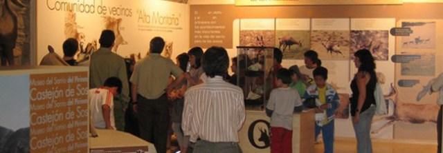 Museo del Sarrio