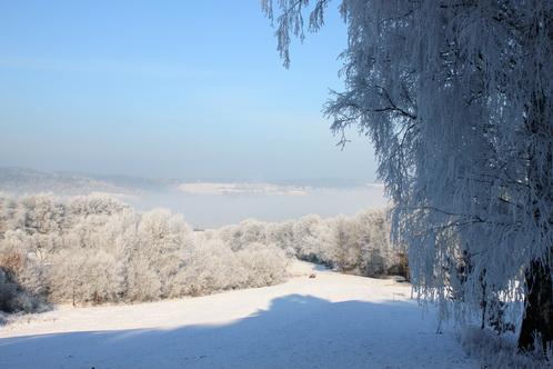 Blick auf den Nebel im Tal 0147