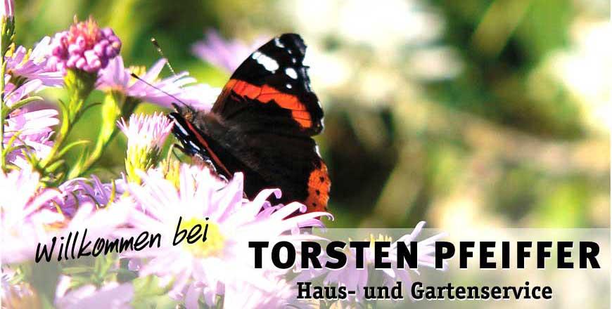 Torsten Pfeiffer  Haus und Gartenservice  LandsbergGielsdorf