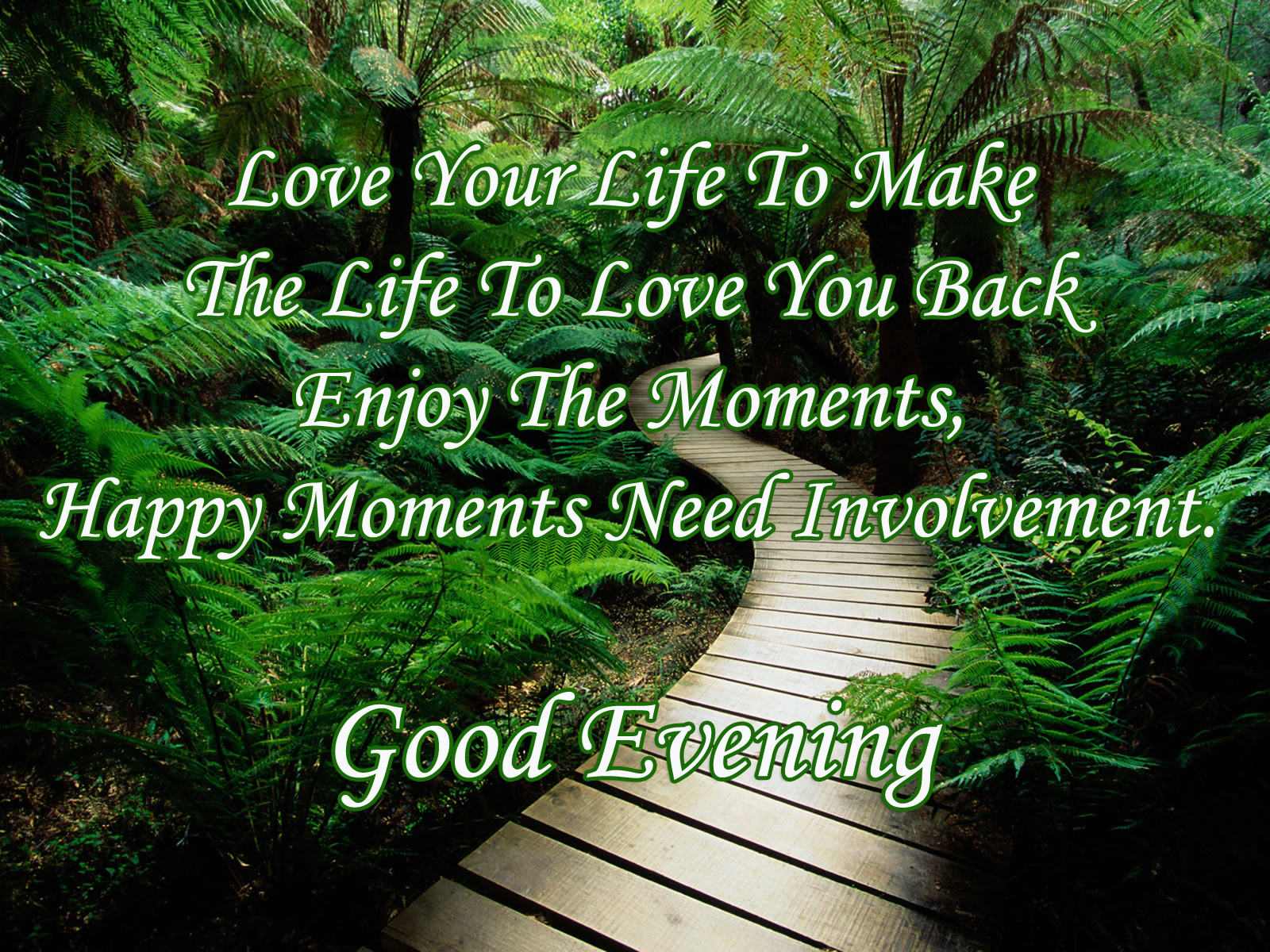 Nice Quotes Love And Life