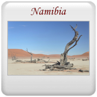 Safari 2013 - Namibia