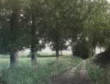 """<h5>Chemin en Limousin</h5><p>Oil on canvas, 63"""" x 83"""" (160 x 211cm)</p>"""