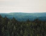 """<h5>Mont Saint-Odile</h5><p>Oil on canvas, 45 x 57"""" (114 x 145cm)</p>"""