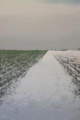 "<h5>Solitude D.911 (Schubert)</h5><p>Oil on canvas, 59"" x 39½"" (150 x 100cm)</p>"