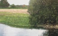 """<h5>Le ruisseau</h5><p>Oil on canvas, 35½"""" x 55"""" (90 x 140cm )</p>"""
