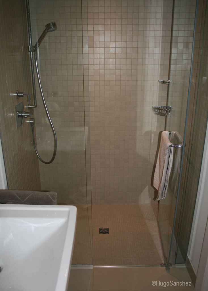 Basement Curbless Shower C 233 Ramiques Hugo Sanchez