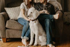 hond en kat thuis bij hun familie