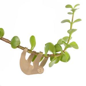 Plantendiertjes