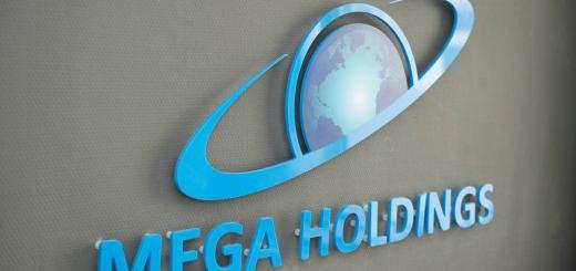 mega holding