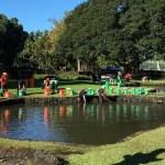 ハワイ島フォト日記 リリウオカラニ公園の池掃除!