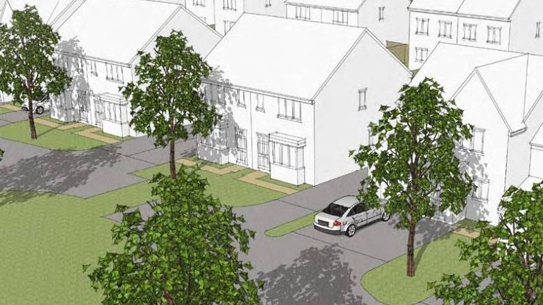 Plans for 121 new houses in Bilton Grange area of Hull are a mix of detached, semi-detached and terraced units.