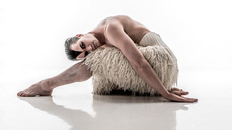Max Westwell as The Swan in Matthew Bourne's Swan Lake.