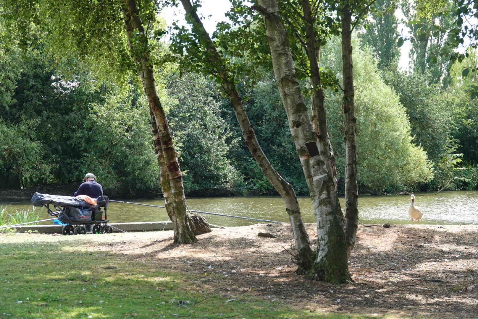 Pickering Park.