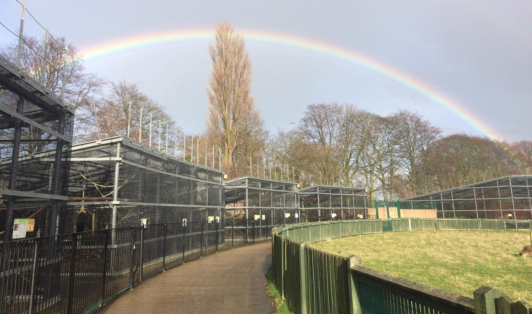A rainbow at East Park's Animal Education Centre