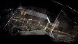 Contemporary artists Heinrich and Palmer have created a stunning visualisation of the Hull Maritime Museum's whale skeleton.