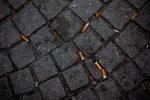 Discarded cigarette butts. Picture: Jasmin Sessler