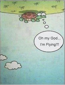 Oh my God! I'm Flying!!