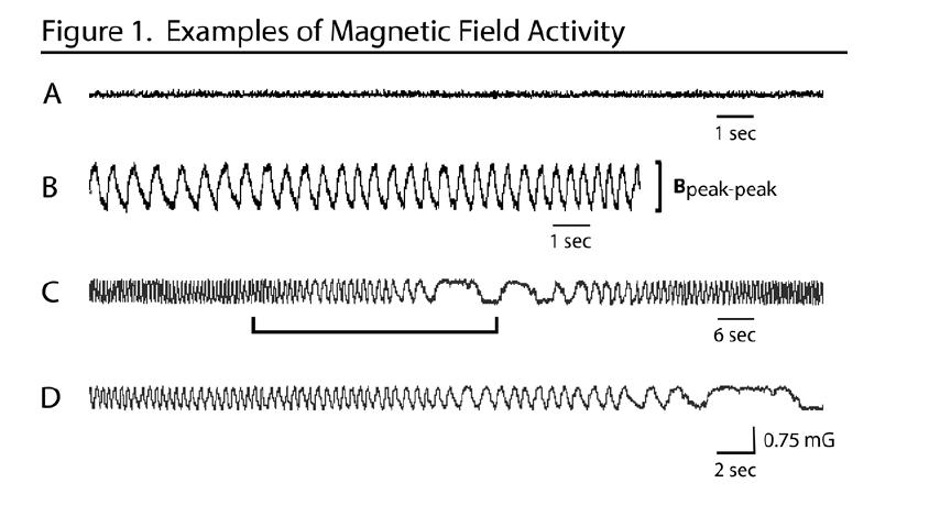 Magnetic Field Activity Moga