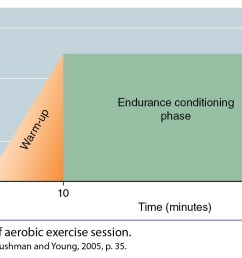 aerobic workout components [ 1524 x 772 Pixel ]