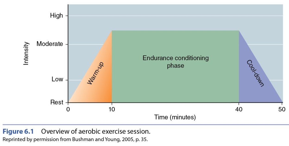 medium resolution of aerobic workout components
