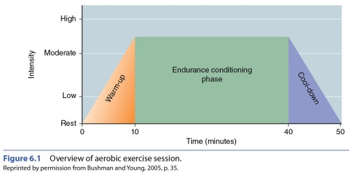 small resolution of aerobic workout components