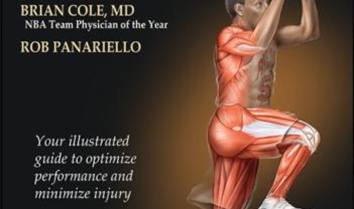 anatomy archives   human kinetics sport, health & fitness blog, Muscles