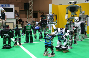 humanoid robocup 2005