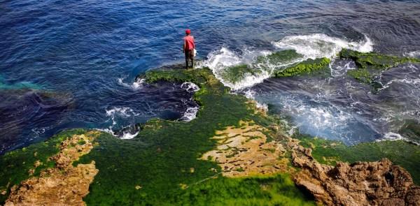 Marine litter reaches critical level in the Mediterranean ...