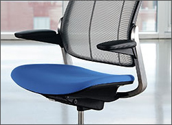 diffrient smart chair mesh back support ergonomic office humanscale low res image