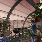 Greenhouse on Mars