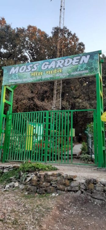 India's first moss garden in Nainital