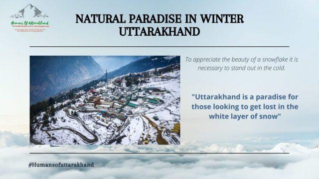 Natural Paradise in Winter Uttarakhand