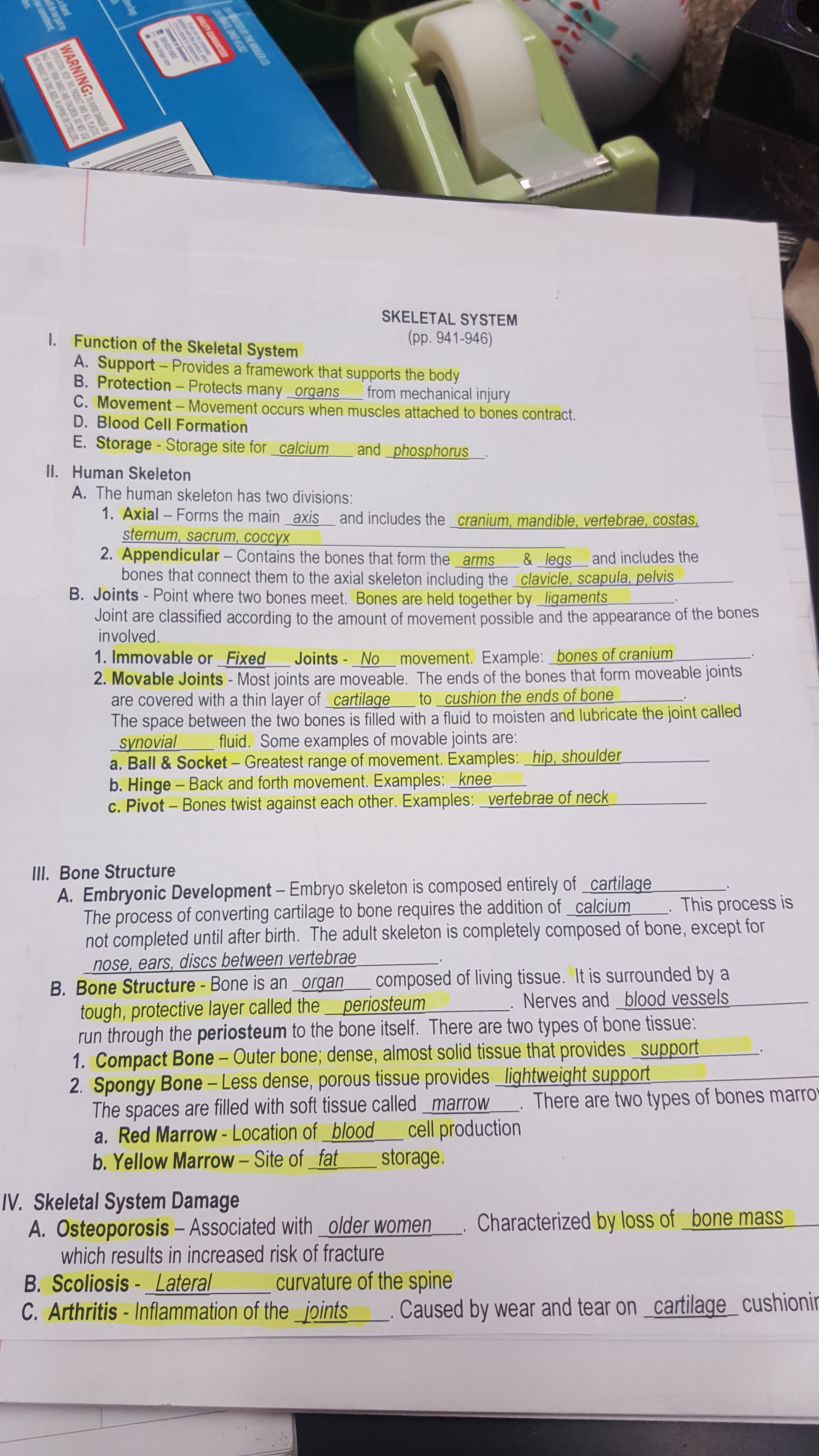 Biology Notes Amp Helpful Documents