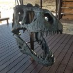 Big Bend National Park Fossil Discovery Exhibit 29