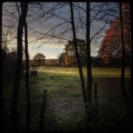 automne_05_011213