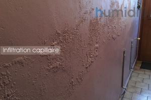 infiltration capillaire