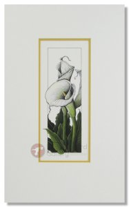 Andie Thrams - Calla Lily