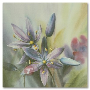 Hummingbird Gallery Les-Weisbrich-Common-Camas-Camassia-Quamash-1-Image Les Weisbrich <p>Flower Series<p>Limited Editions Currently Available