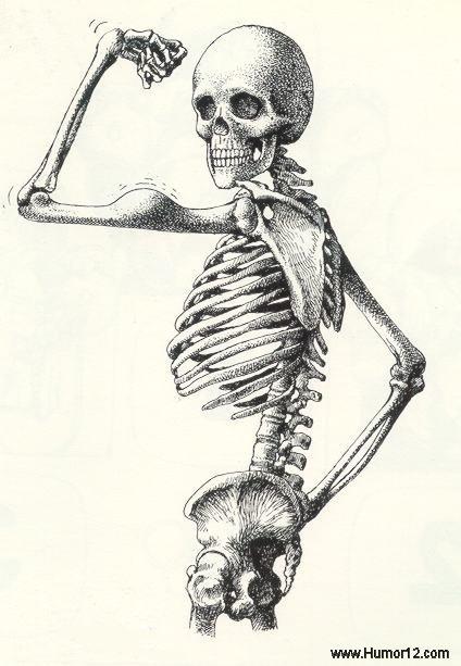 esqueleto_www_Humor12_com.jpg