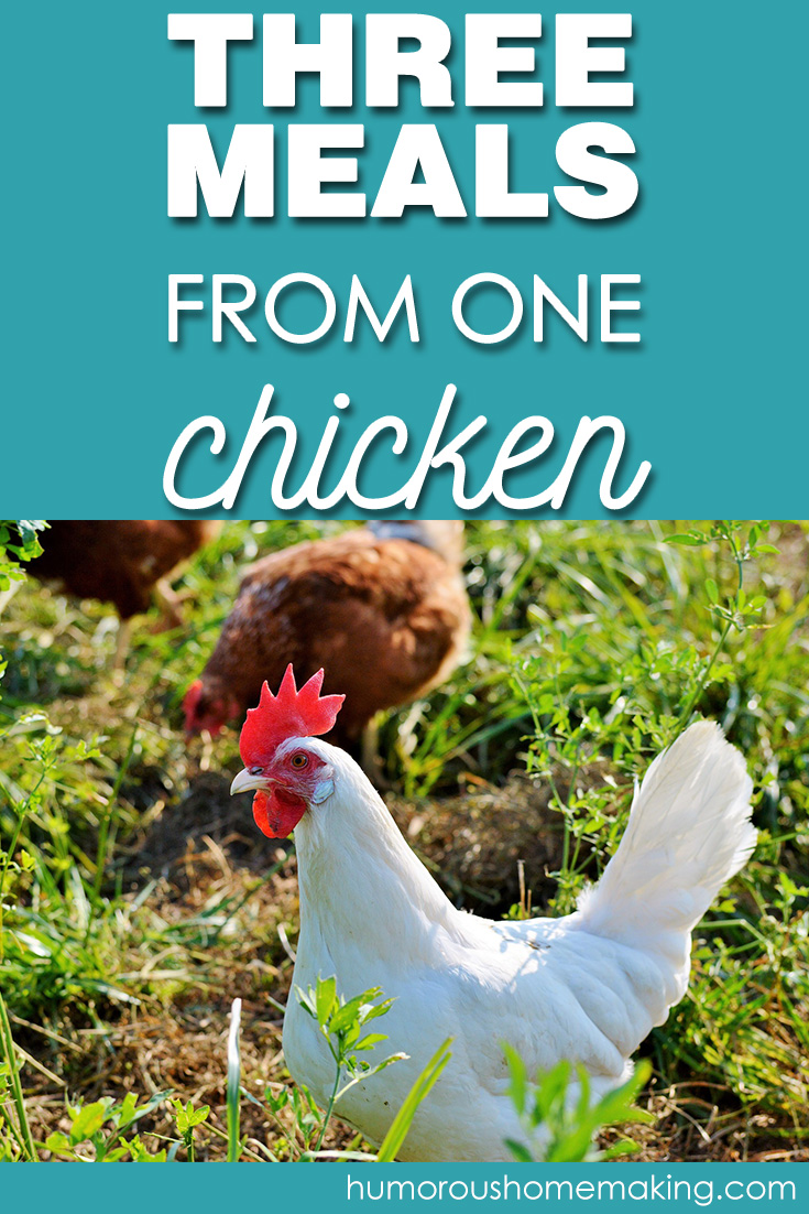 three meals from one chicken