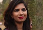 ڈان لیکس، حوالدار میڈیا اور غدار حکومت