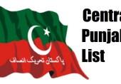 تحریک انصاف کے وسطی پنجاب کے صوبائی امیدوار