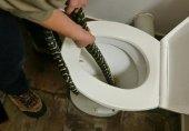 رفع حاجت کے دوران سانپ نے ڈس لیا