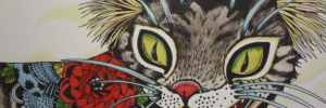 Magical cat drawing