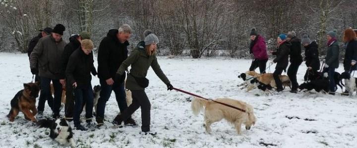 Hundebespaßen im Schnee