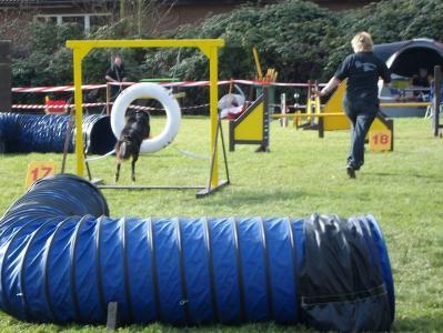 2009.10.25 - Agility Turnier (Hagen)