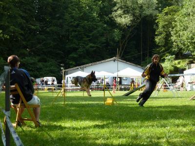 2010.07.18 - Agility Turnier (Sprockhövel)