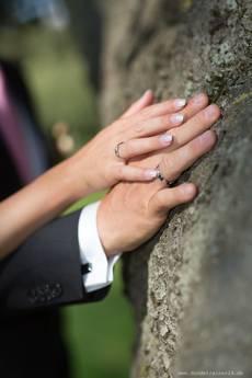 Hochzeit des Jahres bei Hundetrainer24  Hundetrainer24